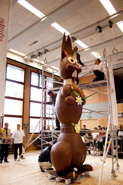 festichoc lapin gigantesque rohr